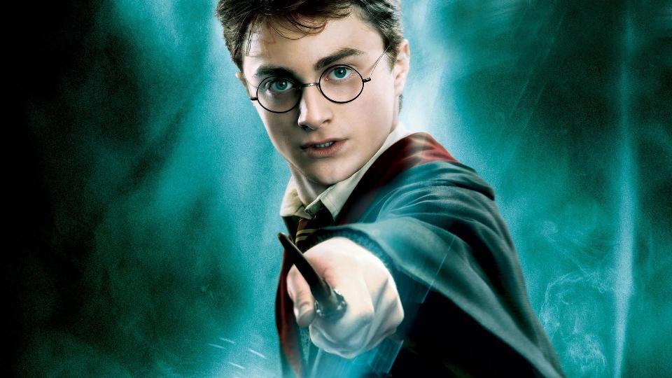 Harry-Potter_pollo